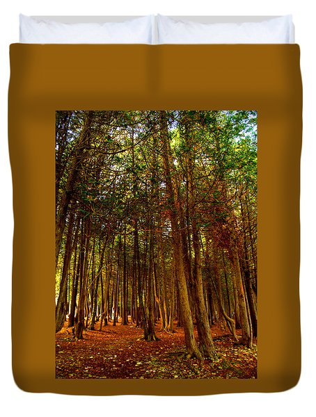 The Woods Duvet Cover