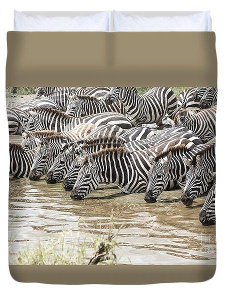 Thirsty Zebras Duvet Cover by Pravine Chester