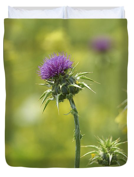 Thistle And Mustard Duvet Cover by Doug Herr