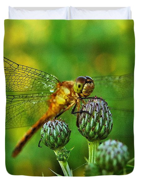 Thistle Dragon Duvet Cover by Michael Peychich