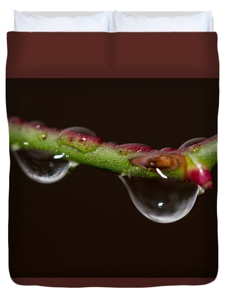 Thorn Dew 2 Duvet Cover