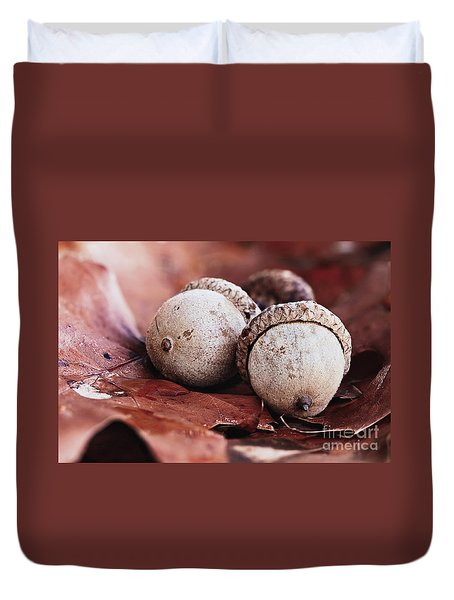 Three Acorns And Autumn Oak Leaves Duvet Cover