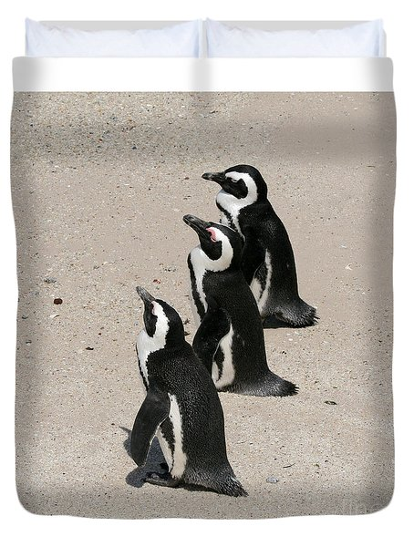 Three African Penguins Duvet Cover