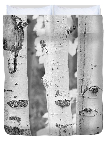 Three Aspens In Black And White  Duvet Cover