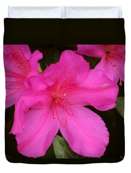 Three Azaleas Duvet Cover
