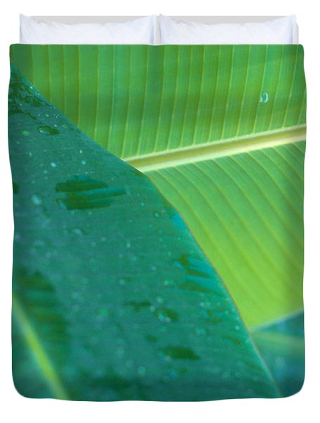 Three Banana Leaves Duvet Cover by Dana Edmunds - Printscapes