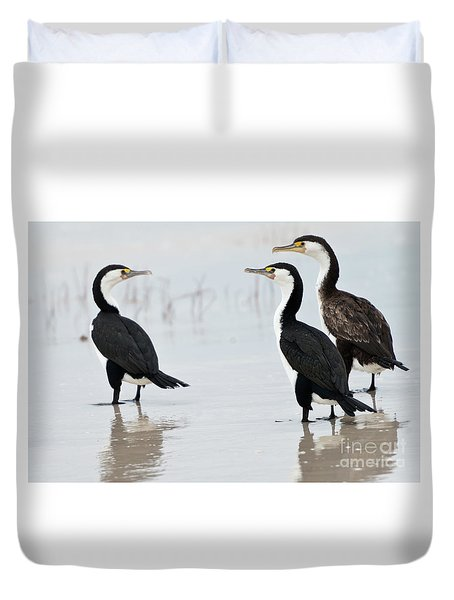 Duvet Cover featuring the photograph Three Cormorants by Werner Padarin