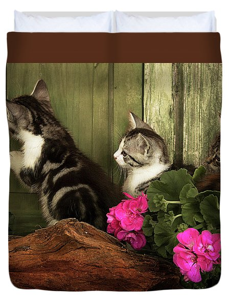 Three Cute Kittens Waiting At The Door Duvet Cover