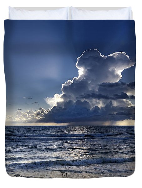 Duvet Cover featuring the photograph Three Ibises Before The Storm by Steven Sparks