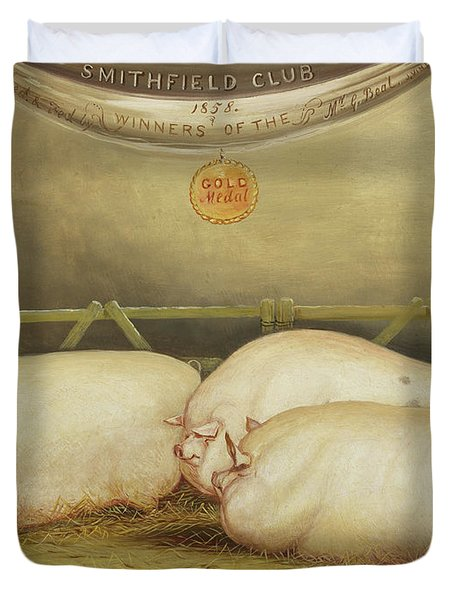 Three Improved Leicesters In A Pen At 1858 Smithfield Club Christmas Show Duvet Cover