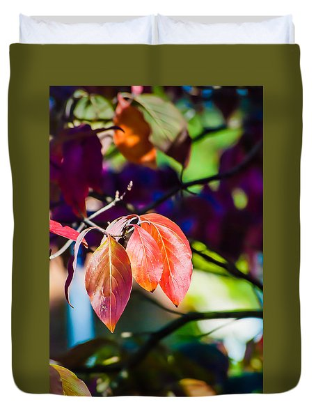 Three Leaves - 9583 Duvet Cover by G L Sarti