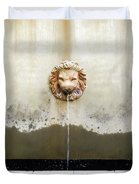 Three Lions Fountain Duvet Cover