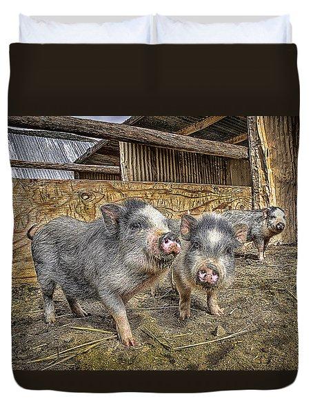 Three Little Piggies Duvet Cover
