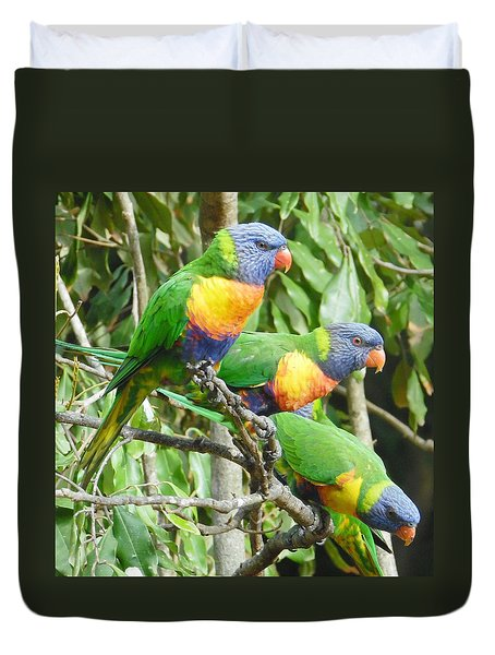 Three Lorikeets Sitting In A Tree Duvet Cover