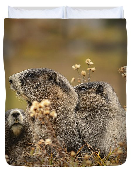 Three Marmots 2 Duvet Cover