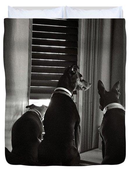 Three Min Pin Dogs Duvet Cover