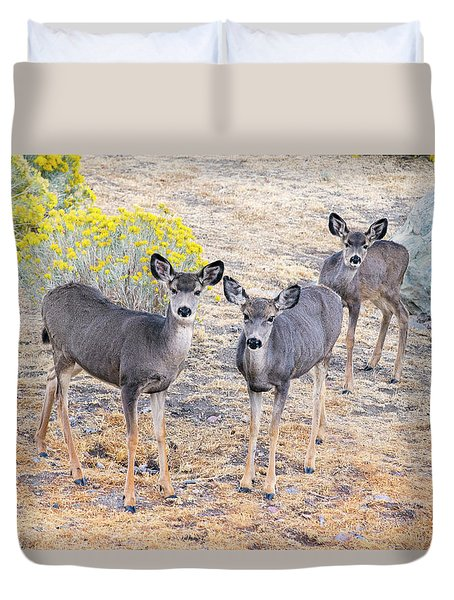 Duvet Cover featuring the photograph Three Mule Deer In High Desert by Frank Wilson