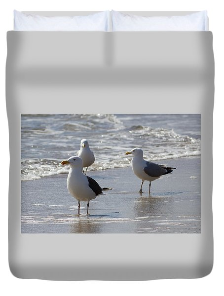 Three Of A Kind - Seagulls Duvet Cover