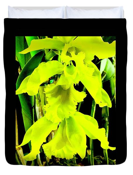 Three Orchids In Yellow Duvet Cover