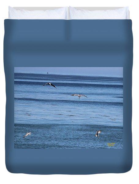 Three Pelicans Diving Duvet Cover