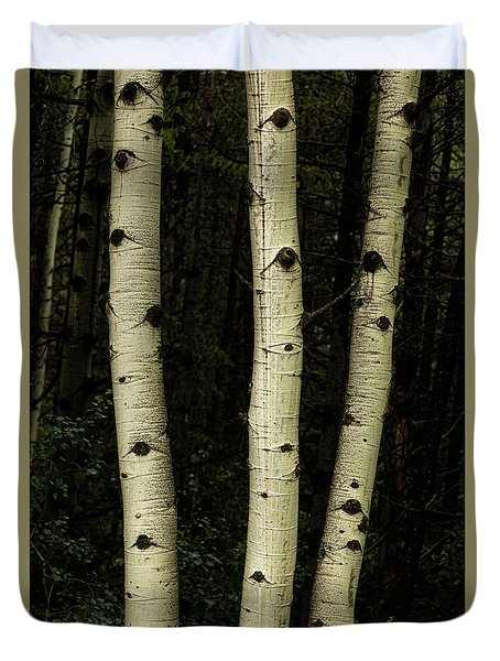Duvet Cover featuring the photograph Three Pillars Of The Forest by James BO Insogna