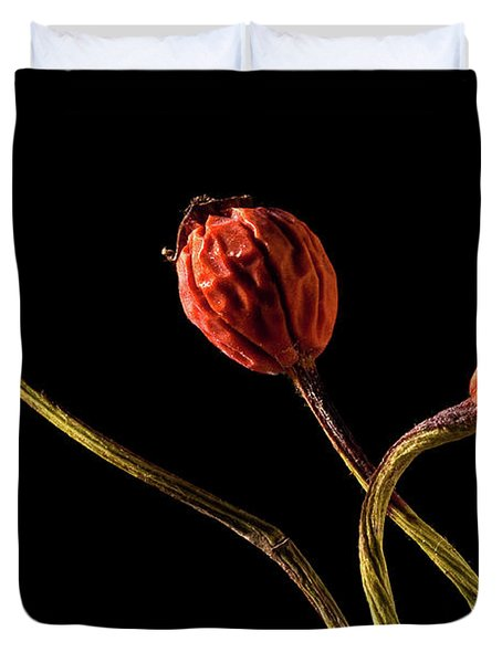 Three Rose Hips Duvet Cover by  Onyonet  Photo Studios