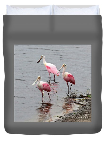 Three Roseate Spoonbills Square Duvet Cover by Carol Groenen