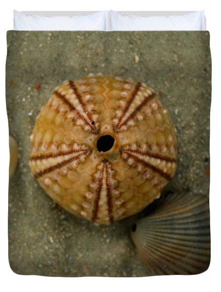 Three Shell Study Duvet Cover