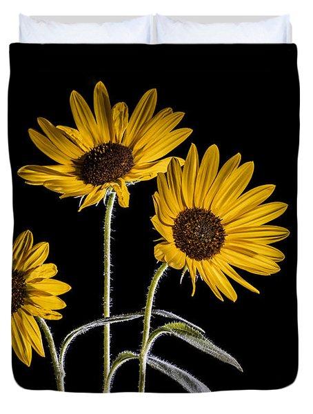Three Sunflowers Light Painted On Black Duvet Cover by Vishwanath Bhat