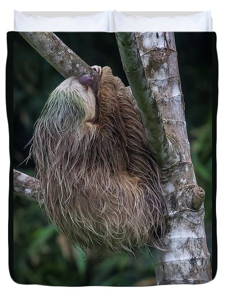 Duvet Cover featuring the photograph Three Toed Sloth by John Haldane