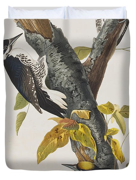 Three Toed Woodpecker Duvet Cover by John James Audubon