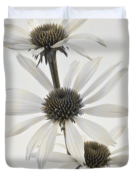 Three White Coneflowers Duvet Cover by Sandra Foster