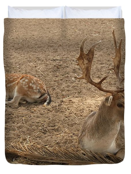 Three Deer Resting Duvet Cover