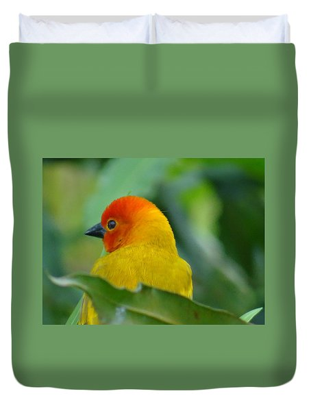 Through A Child's Eyes - Close Up Yellow And Orange Bird 2 Duvet Cover