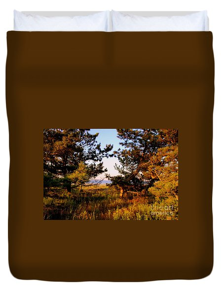 Through The Pine Grove Duvet Cover