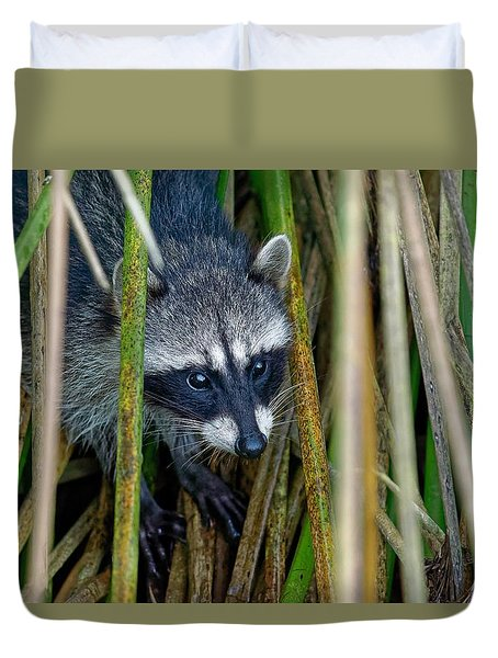 Through The Reeds - Raccoon Duvet Cover