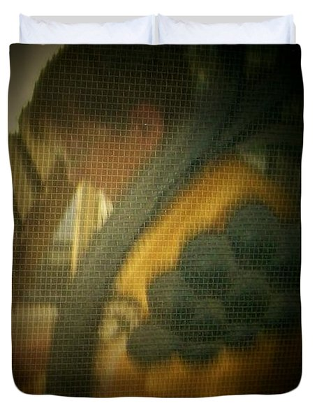 Through The Screen Door Duvet Cover by Lenore Senior