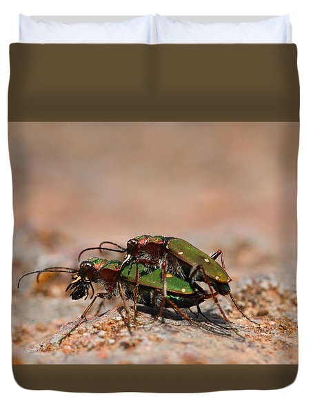 Duvet Cover featuring the photograph Tiger Beetle by Richard Patmore