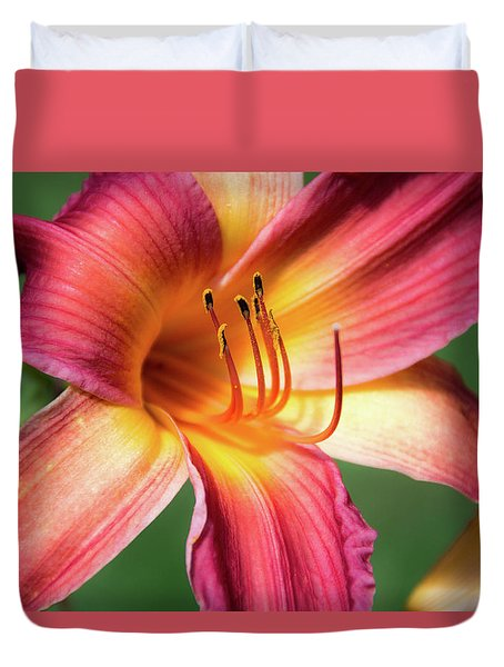 Tiger Lily Close Up Duvet Cover