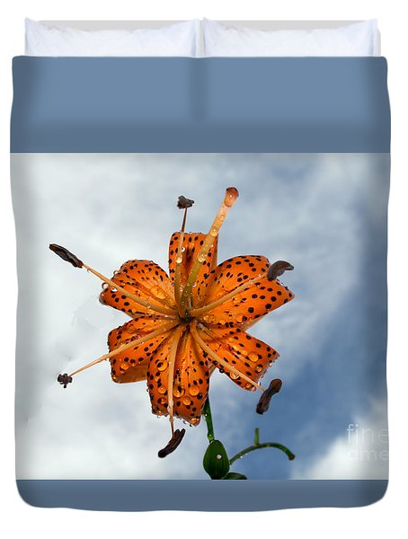 Tiger Lily In A Shower Duvet Cover