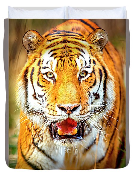 Tiger On The Hunt Duvet Cover by David Millenheft