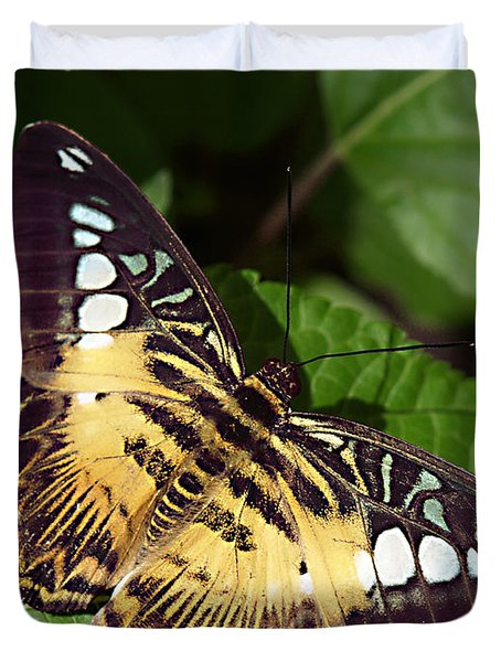 Tiger Print --- Clipper Butterfly Duvet Cover
