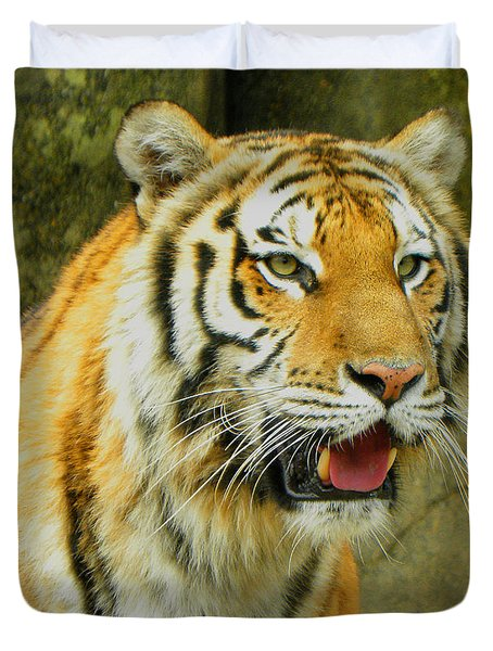 Duvet Cover featuring the photograph Tiger Stare by Sandi OReilly