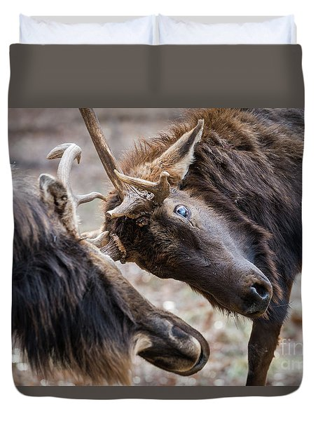 Duvet Cover featuring the photograph Tilt by Andrea Silies