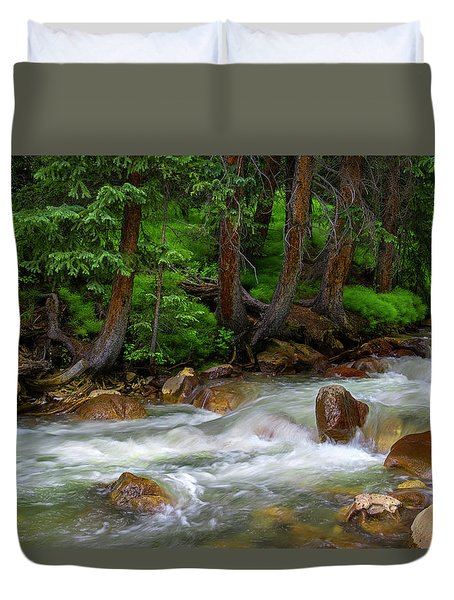 Duvet Cover featuring the photograph Timeless by Tim Reaves