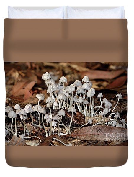 Duvet Cover featuring the photograph Tiny Corrugated Fungi By Kaye Menner by Kaye Menner