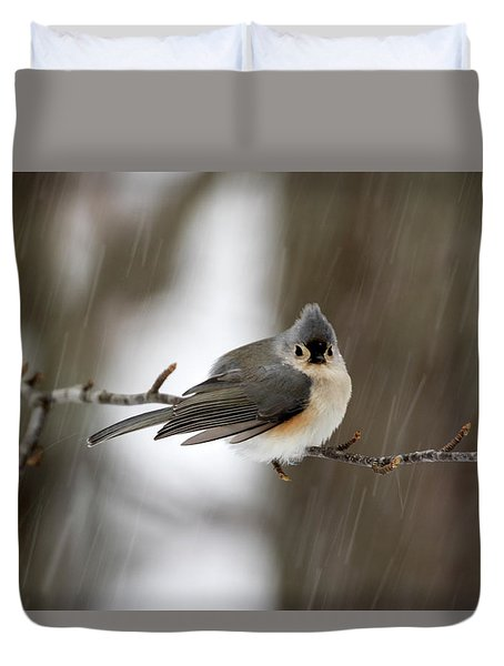 Titmouse During Snow Storm Duvet Cover by Betty Pauwels