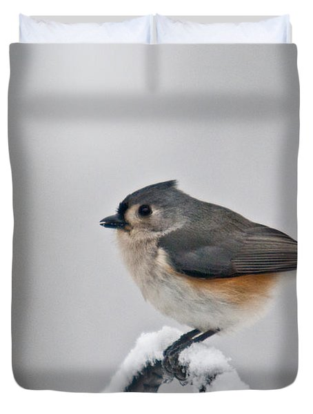 Titmouse Ready To Fly Duvet Cover