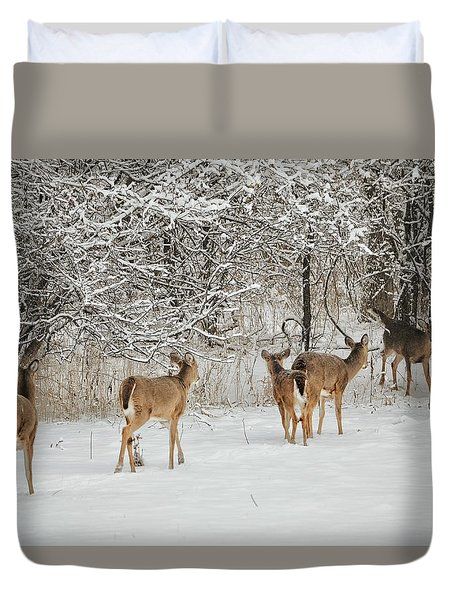 To Greet A Friend Duvet Cover by Nikki McInnes