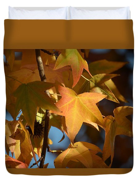 Duvet Cover featuring the photograph To Me Is Fun It Feels Like Fall.  by Alex King